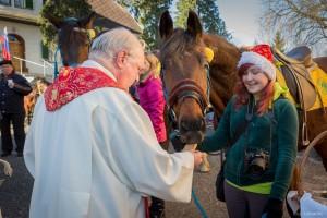 Blagoslov konj v Pernici 2014
